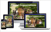 cat-dog-websites