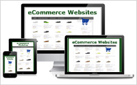 ecmmerce-websites-200