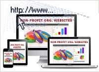 Non-profit org. internet presence